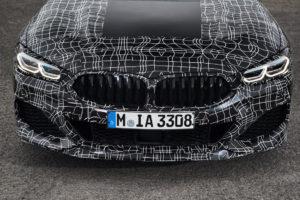 BMW M850i xDrive - BMW Serie 8 Coupe G14 Spy 2018 (12)