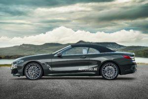 BMW Serie 8 Cabrio 2018 Leaked G14 (3)