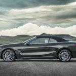 BMW Serie 8 Cabrio 2019 G14 (10)