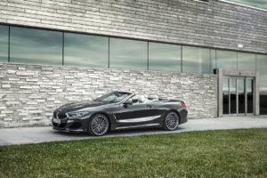 BMW Serie 8 Cabrio 2019 G14 (11)