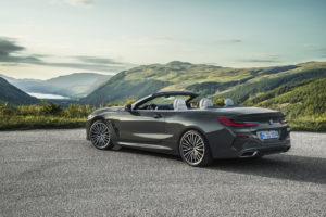 BMW Serie 8 Cabrio 2019 G14 (13)