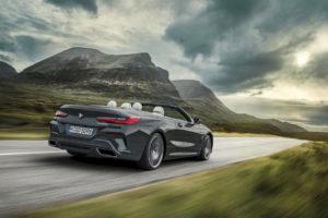 BMW Serie 8 Cabrio 2019 G14 (15)