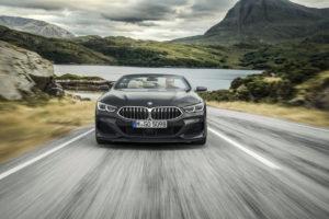 BMW Serie 8 Cabrio 2019 G14 (4)