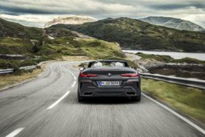BMW Serie 8 Cabrio 2019 G14 (5)