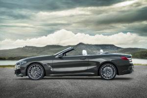 BMW Serie 8 Cabrio 2019 G14 (8)